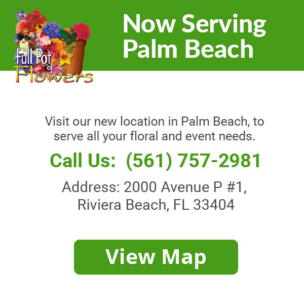 Serving Palm Beach